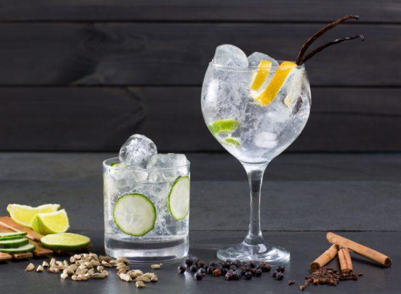 citrus gin